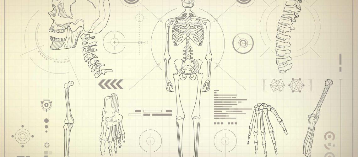 history of chiropractic